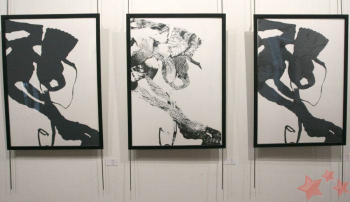 Exposición de Sonia Chacón Gil