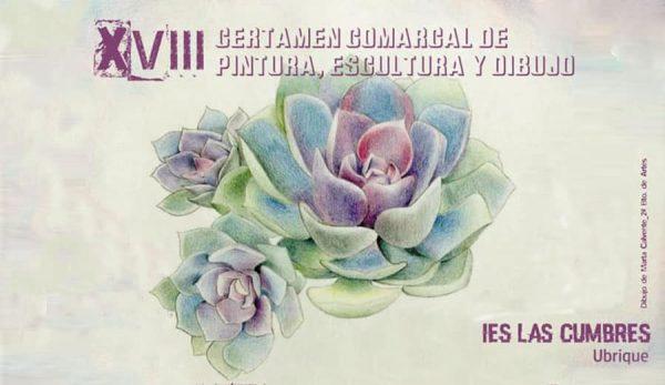 Certamen comarcal IES Las Cumbres